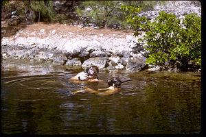 Biscayne National Park BISC0668.jpg