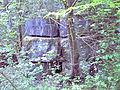 Blaustein im NSG Schomet.jpg