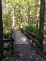 Blendon Woods Metro Park October 2018 17.jpg