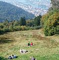 Blick ins Neckartal - panoramio (1).jpg
