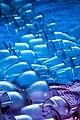 Blue Crystal (86258989).jpeg