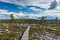 Boardwalk on Kivitunturi and Vasatunturi in the background, Savukoski, Lapland, Finland, 2021 June.jpg