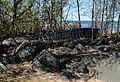 Boat Isoniemi Oulu 20140529.JPG
