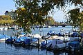 Boats in the Limmat.jpg