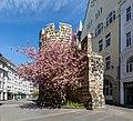 Bonn, Sterntor -- 2020 -- 6505.jpg