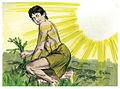 Book of Genesis Chapter 4-8 (Bible Illustrations by Sweet Media).jpg