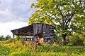 Booker farm barn.jpg