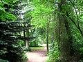 Botanischer Garten der TU Darmstadt - IMG 7040.JPG