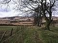 Boundary Track - geograph.org.uk - 1768795.jpg