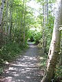 Bow Park trail. READ INFO IN PANORAMIO-COMMENTS - panoramio.jpg