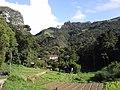 Brasil Rural - panoramio (51).jpg