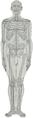 Braus 1921 1b.png