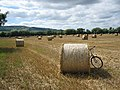 Bredon Hill from Little Comberton - geograph.org.uk - 39691.jpg