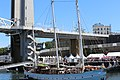 Brest 2016 - 20160715-013 Rara Avis.jpg