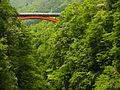 Bridge over the gorge - panoramio.jpg