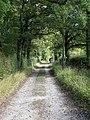 Bridleway to South Road - geograph.org.uk - 1529889.jpg