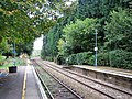 Brundall Gardens station - view east along the line - geograph.org.uk - 1531888.jpg