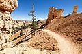 Bryce Canyon (15365398016).jpg