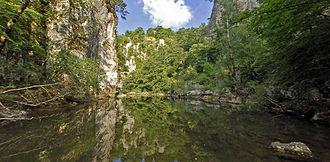 Škocjan Caves Regional Park - The Reka Gorge