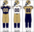 CFL Jersey WPG 2006.PNG