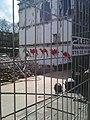Camels Eerste Oosterparkstraat2.jpg
