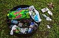 Campsite Litter - Picnic Area Trash (29696001138).jpg
