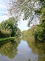 Canal near Weston-on-Trent, Derbyshire - geograph.org.uk - 1555388.jpg