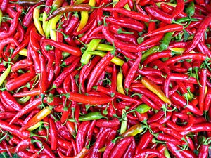 Sambal - Fresh chilis are the main ingredient for a sambal.