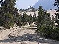 Carcross Desert 2009 5.jpg