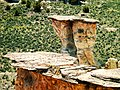 Castle Gardens Scenic Area by Ten Sleep, Wyoming 27.jpg
