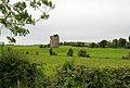Castles of Leinster, Gortnaclea, Laois (1) - geograph.org.uk - 2493965.jpg
