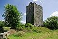 Castles of Munster, Moyree, Clare (1) - geograph.org.uk - 1952606.jpg