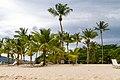 Cayo Levantado, Samaná 32000, Dominican Republic - panoramio (15).jpg