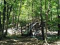 Cedar Falls Trail, Petit Jean State Park 005.jpg