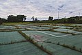 Centennial Park Tennis Court - Overgrown Abandoned - Brooklyn Center, Minnesota (34754540371).jpg
