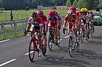 Championnat de France de cyclisme handisport - 20140614 - Course en ligne catégorie B 5.jpg