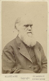 Charles Darwin photograph by Elliott and Fry, late 1870s.jpg
