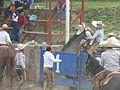 Charreada en El Sabinal, Salto de los Salado, Aguascalientes 23.JPG