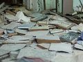 Chernobyl and Pripyat (4854367696).jpg