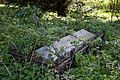 Church of St Mary Little Laver Essex England - churchyard overgrown fenced tomb.jpg