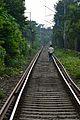 Circular Railway Track - Kolkata 2012-09-22 0329.JPG