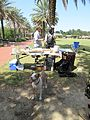 City Park New Orleans 24 Sept 2016 Great Lawn 03.jpg