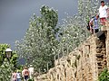 City Walls with Blossoms - Alcudia - Mallorca - Spain (14510866186).jpg