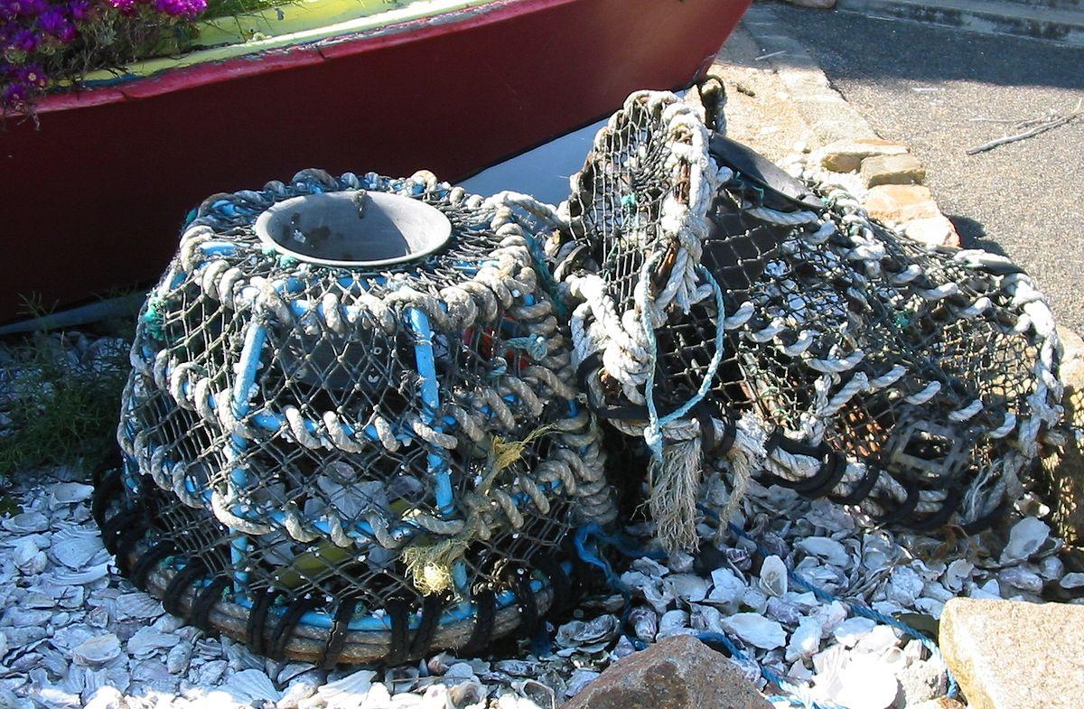 J C Lobster Pot Lobster trap - Wikiped...