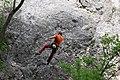 Climbing (4672327479).jpg