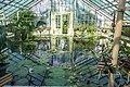 Cluj-Napoca Botanical Garden-9964.jpg