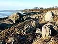 Clyde foreshore with boulders - geograph.org.uk - 1068898.jpg