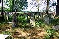 Cmentarz żydowski w Dobrodzieniu19.JPG