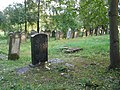 Cmentarz żydowski w Krośnie A-338 z 26.09.1995.jpg