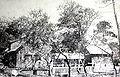 Cobb Cottage.jpg